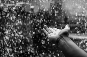 Rain and Pain Not Related, Harvard Researchers Say