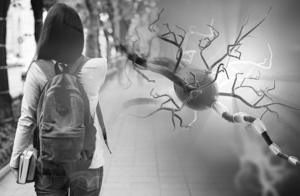 GAD65Ab Autoantibody Sheds Light on Epilepsy's Etiologies